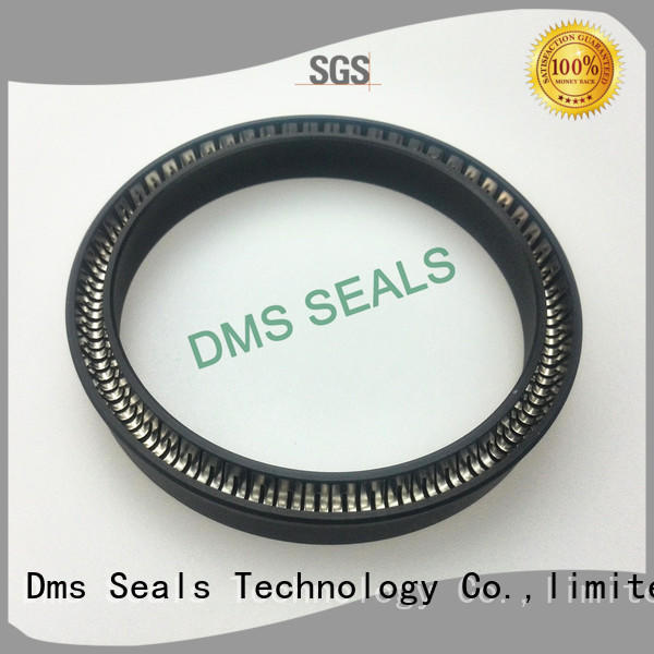 ptfe spring energized seals parts for reciprocating piston rod or piston single acting seal