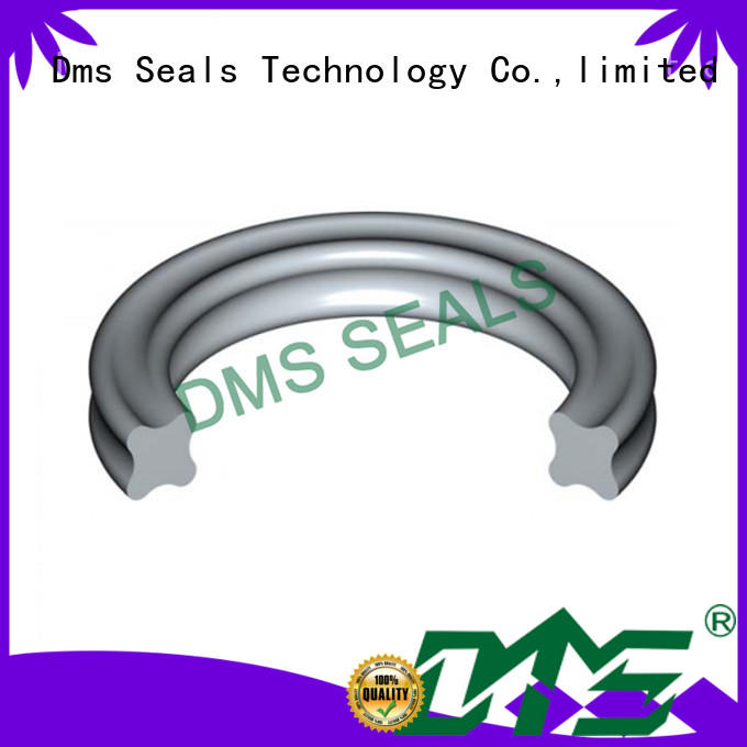 DMS Seal Manufacturer pfa O Ring Manufacturer in highly aggressive chemical processing