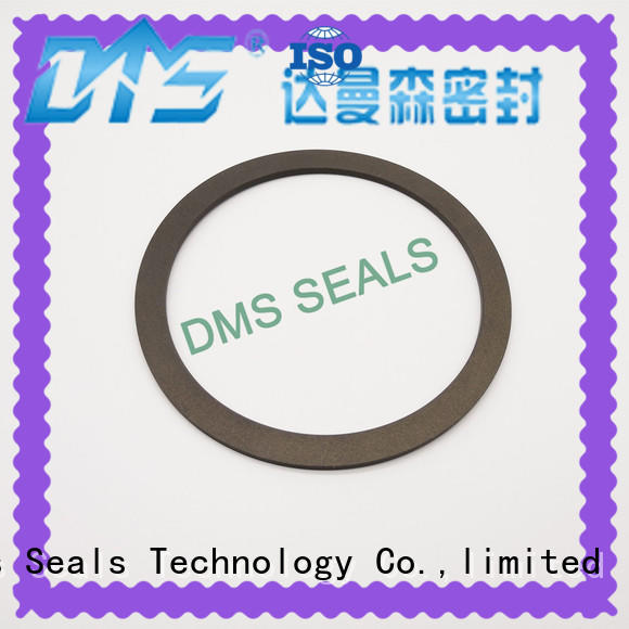 custom viton gasket hot sale for preventing the seal from being squeezed DMS Seal Manufacturer