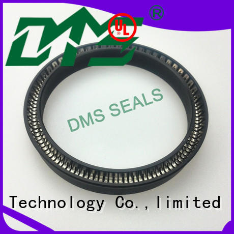 DMS Seal Manufacturer spring seals solutions for reciprocating piston rod or piston single acting seal