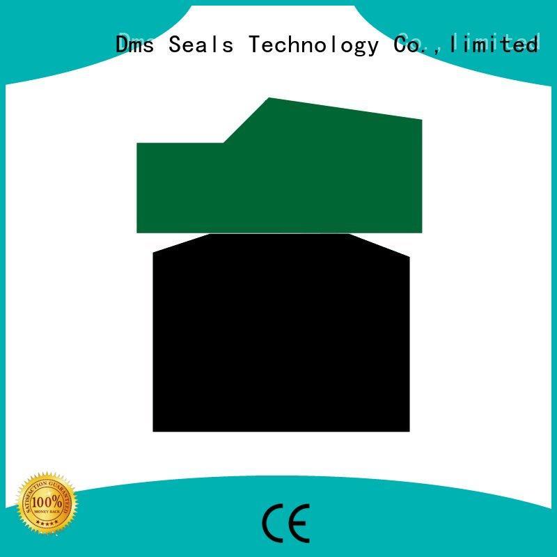 Custom piston piston seals ptfe DMS Seal Manufacturer