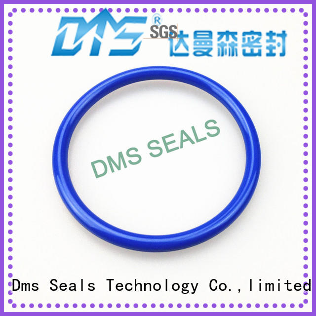 oil seal ring hydraulic spring seal DMS Seal Manufacturer Brand company
