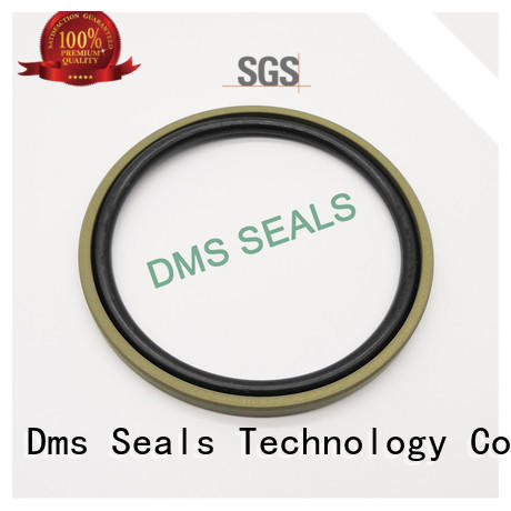 spgw hydraulic seals catalogue tpm for piston and hydraulic cylinder DMS Seal Manufacturer
