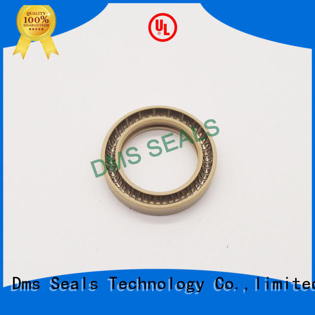 DMS Seal Manufacturer spring energized seals supplier for reciprocating piston rod or piston single acting seal