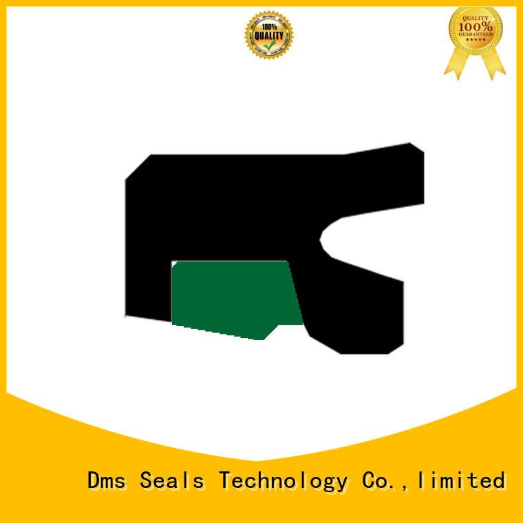 DMS Seal Manufacturer step piston rod seal seal environment