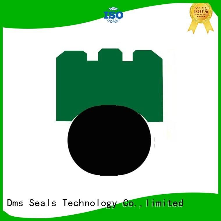 rotary shaft seals hydraulic seal ptfe DMS Seal Manufacturer Brand company