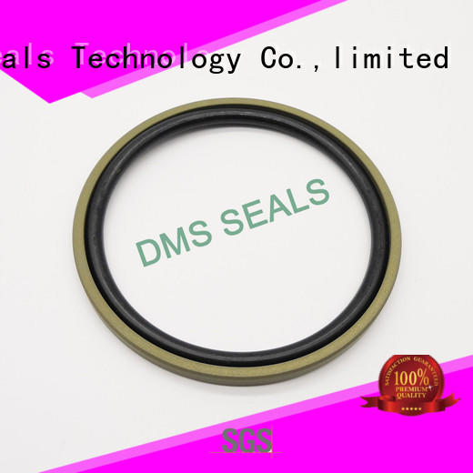 DMS Seal Manufacturer bronze filled hydraulic cylinder piston seals supplier for piston and hydraulic cylinder