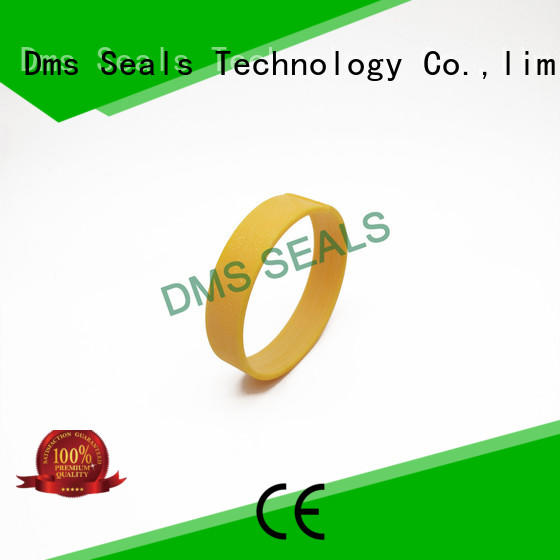 DMS Seal Manufacturer High-quality bearing the elements as the guide sleeve