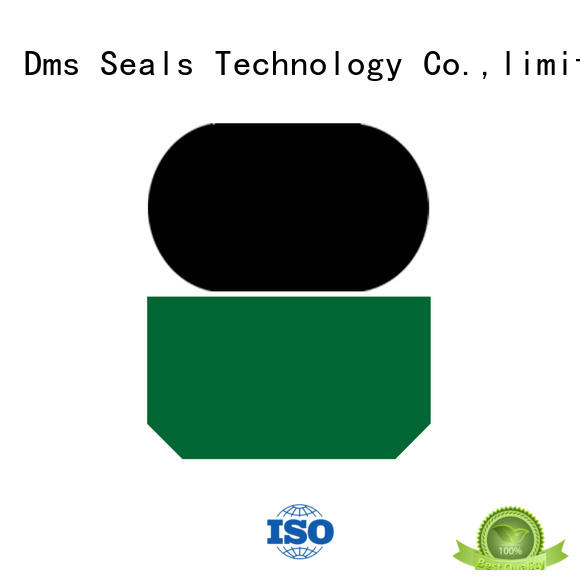 GSI - PTFE Hydraulic Rod Seal with NBR/FKM O-Ring