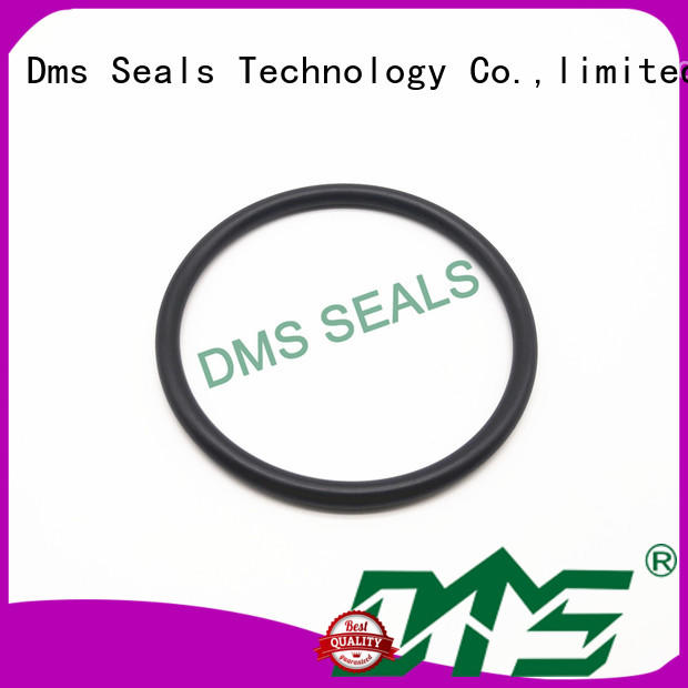 o ring kit manufacturer in highly aggressive chemical processing DMS Seal Manufacturer