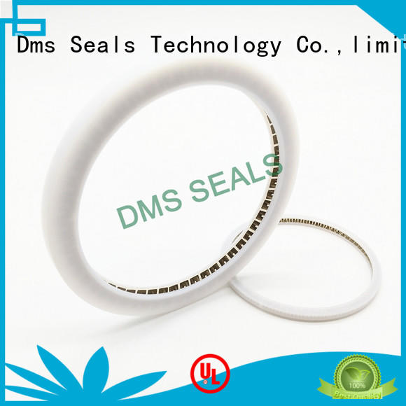 food and medicine industry oil seal manufacturer solutions for reciprocating piston rod or piston single acting seal