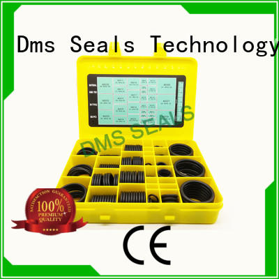 DMS Seal Manufacturer good quality o ring mould company For sealing products