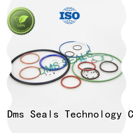 DMS Seal Manufacturer o ring seal supplier for business in highly aggressive chemical processing