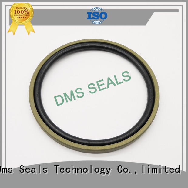 DMS Seal Manufacturer best hydraulic ram seals for larger piston clearance