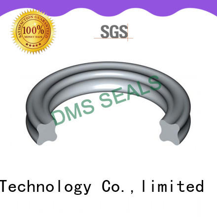 DMS Seal Manufacturer o-ring seal in highly aggressive chemical processing