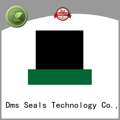 seal rod seal catalogue rod environment DMS Seal Manufacturer