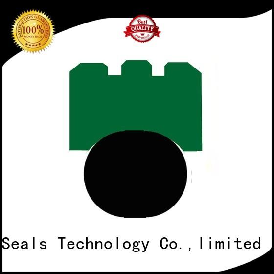 DMS Seal Manufacturer ptfe rotary seals manufacturer oi for automotive equipment