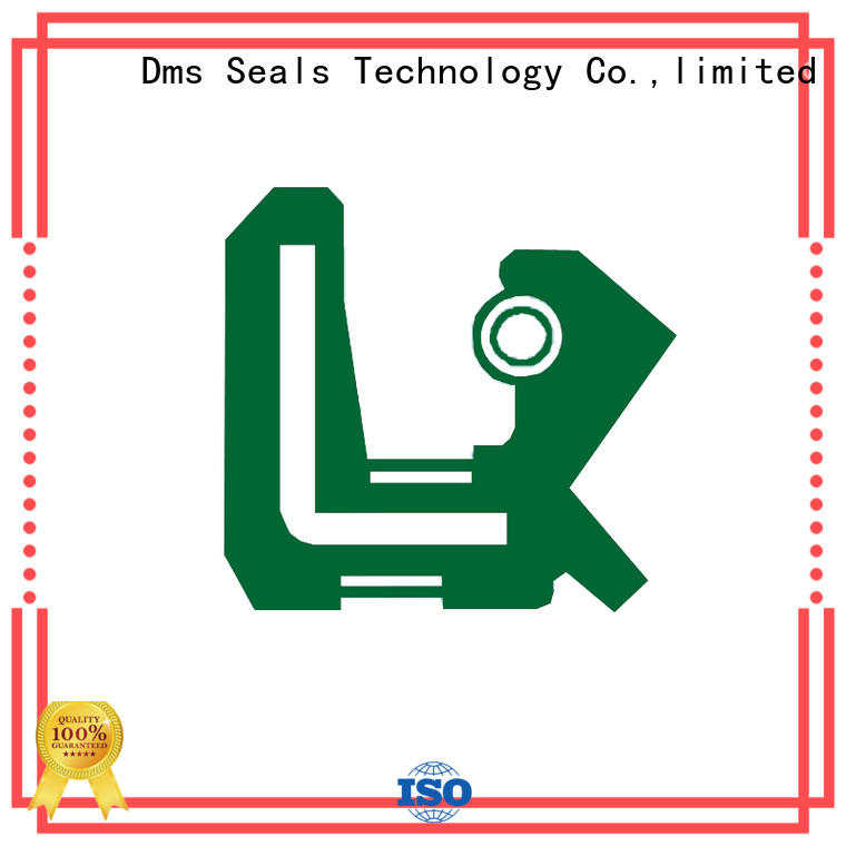 tc tcm oil seals tc for low and high viscosity fluids sealing DMS Seal Manufacturer