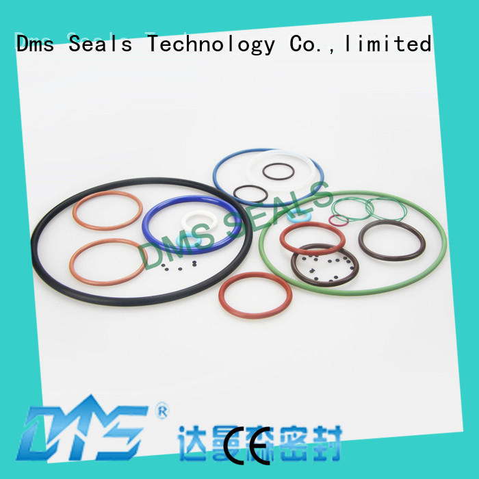 Latest extra large o rings in highly aggressive chemical processing