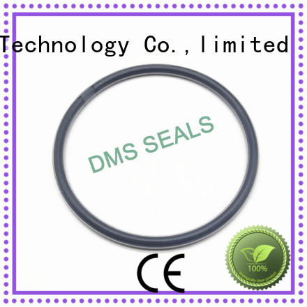 DMS Seal Manufacturer o ring seal manufacturer online for static sealing