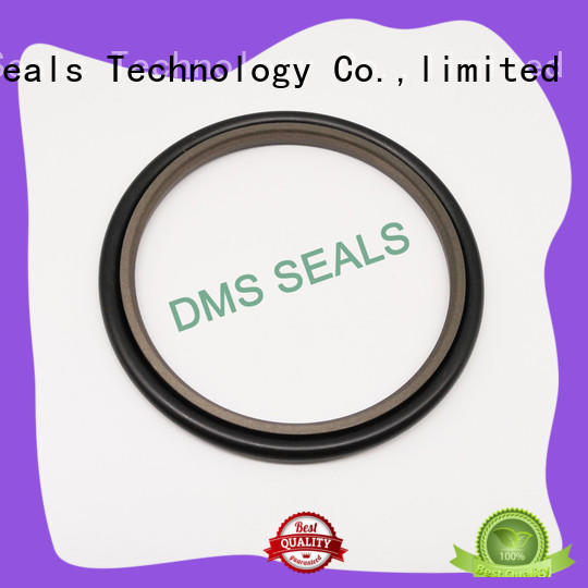 DMS Seal Manufacturer spgw hydraulic ram seals o ring for piston and hydraulic cylinder