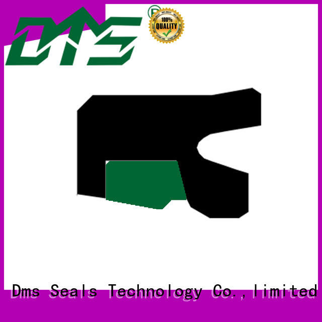 rod seal catalogue with nbr or pu for sale DMS Seal Manufacturer