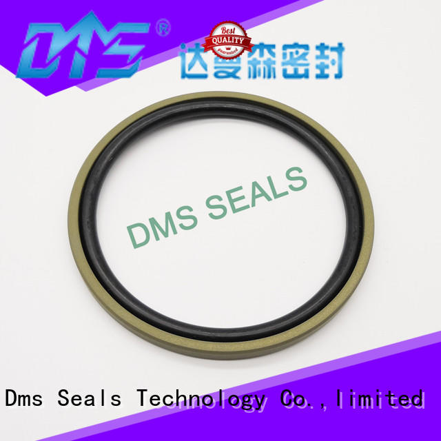 piston hydraulic cylinder piston ring for piston and hydraulic cylinder DMS Seal Manufacturer